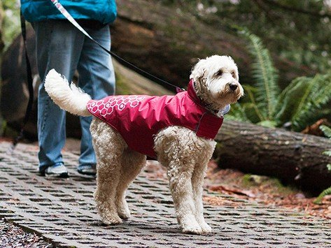 Rc Pets Reflective Fleece Lined Outerwear