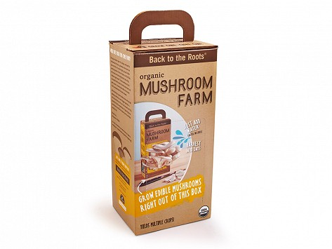 Back To The Root Mushroom Kit
