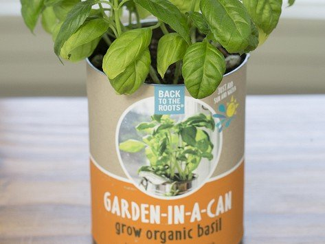 Back To The Root Garden In A Can 4 Pack