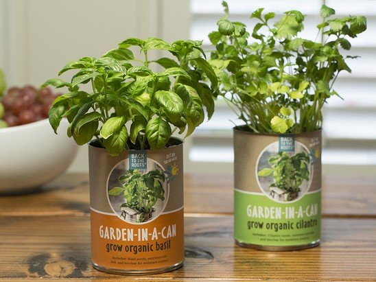 Back to the Roots - Indoor Garden Kits