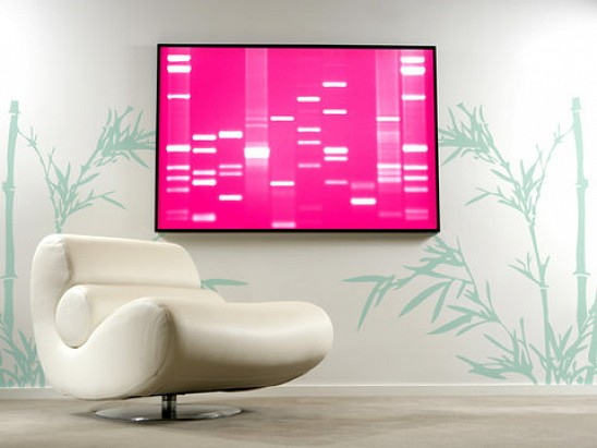 DNA11 - Turning DNA into Art