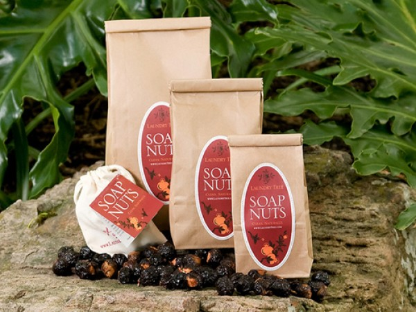 Laundry Tree Soap Nuts Review Organic Laundry Detergent