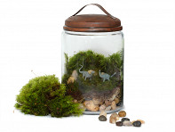 Twig Terrariums: Jurassic in a Jar