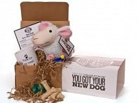 Up All Night Press: You Got Your New Dog Kit
