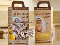 Back to the Roots: Set of 2 Mushroom Kits
