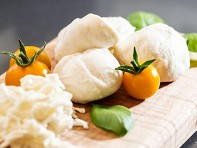 Urban Cheesecraft: Dairy-Free Mozzarella & Ricotta DIY Kit