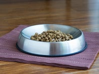 Dr. Catsby's: Whisker Relief Food Bowl - Sample
