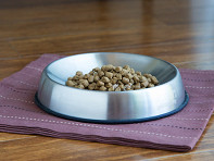 Dr. Catsby's: Whisker Relief Food Bowl - Case of 6