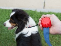 Ergonomic Leash Grip