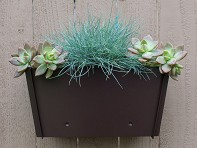Groovebox Living: Flat-Pack Wall Planter - Case of 3
