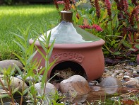 Wildlife World: Ceramic Frog & Toad House