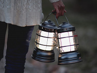 Barebones Living: Forest Lantern - Case of 6