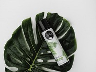 Cannabidiol Infused Hair Care