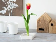 Florida Vase: Floating Flower Pin Vase - Sample
