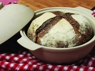 Sassafras: Bread Dome - Case of 4