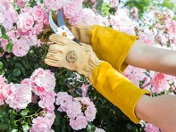 Womanswork: Rose Gauntlet Glove
