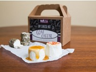 Urban Cheesecraft: Goat/Chevre DIY Cheese Kit - Case of 12