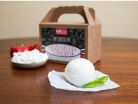 Urban Cheesecraft: Mozzarella & Ricotta DIY Cheese Kit - Case of 12