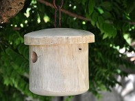 Primitive Bird Home - White