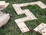 Snake Eyes: Wooden Dominoes - Case of 9