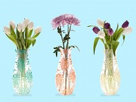 Expandable and Collapsible Vases