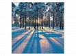 Wooden Jigsaw Puzzle - Small - Sunrise in a Winter Forest