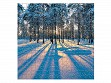 Large Wooden Jigsaw Puzzle - Sunrise in a Winter Forest
