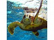 Teaser Wooden Jigsaw Puzzle - Sea Turtle 1