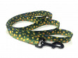 Fish Skin Print Dog Leash - Brook Trout