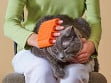 Pet Silicone Sleeve Mixed Pack - Case of 24