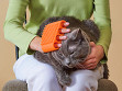 Pet Silicone Sleeve - Single Color - Case of 24