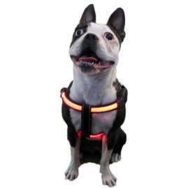 LitePaw L.E.D Illuminated dog harness