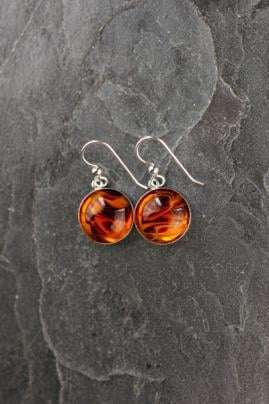 Stillwater College Town Earrings