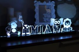 Childrens customizable led name light