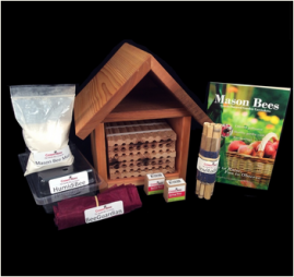 Mason Bees & Supplies